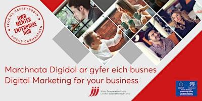 Marchnata Digidol ar gyfer busnes | Digital Marketing for business