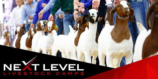 NEXT LEVEL SHOW GOAT CAMP | July 11th/12th, 2020 | Connell, WA