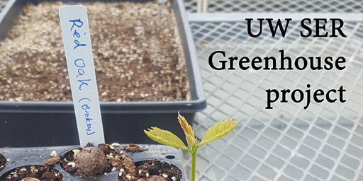 Greenhouse skills with UW SER
