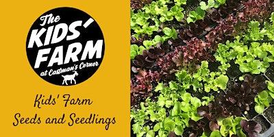 Kids' Farm: Seeds and Seedlings