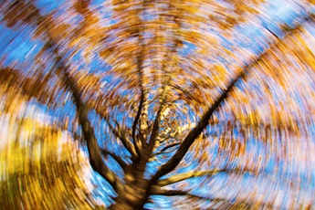 Balance, Dizziness, and Vertigo: Get relief with Physical Therapy tickets