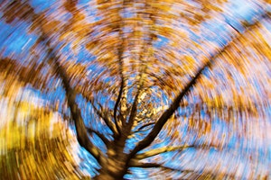 Balance, Dizziness, and Vertigo: Get relief with Physical Therapy