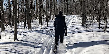 OttFreeFit Snowshoe Hike in Gatineau Park tickets