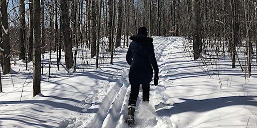 OttFreeFit Snowshoe Hike in Gatineau Park