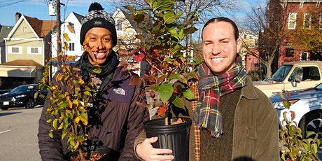 Tree Giveaway: Oakland/Hill District tickets