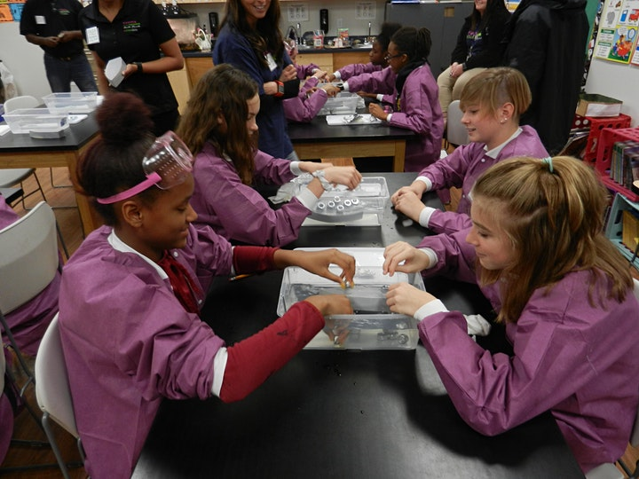 Expanding Your Horizons - Virtual STEM Workshop for Middle School Girls image