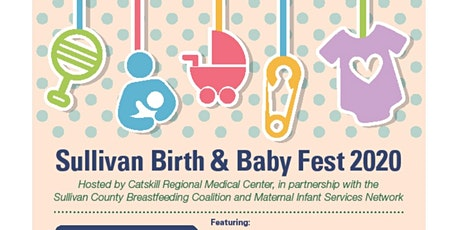 Sullivan County Birth and Baby Fest 2020 tickets