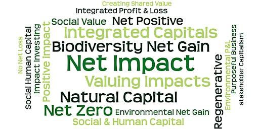 Net Impact Approaches 2020