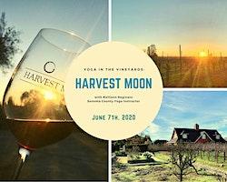 Yoga in the Vineyards: Harvest Moon