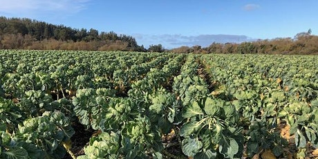 Farming Near Riparian Areas:  Benefits and Food Safety Risks - POSTPONED tickets
