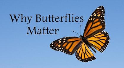 Why Butterflies Matter tickets