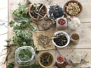 Wild Plant Permaculture Class tickets