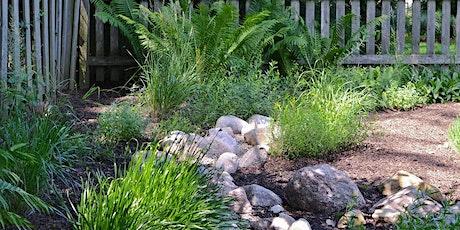 Harvesting Rainwater and Building a Rain Garden tickets
