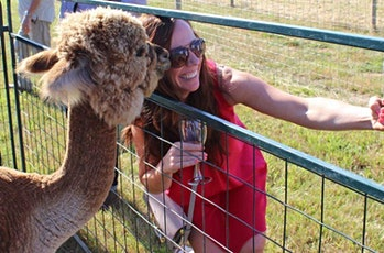 Dinner in the Field at Alpacas at Marquam Hill w/  Alexeli Vineyard tickets