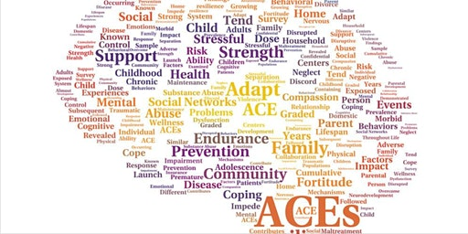 Adverse Childhood Experiences Learning Community Meeting