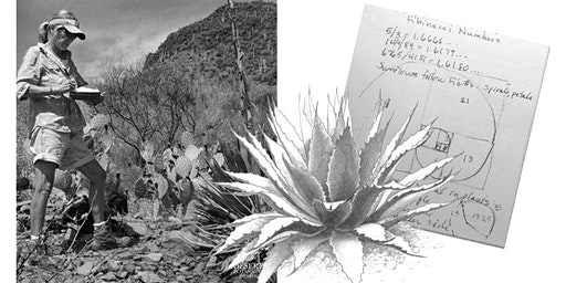 Session 8, AGAVES - Drawing Skills for Field Notebooks (Tumamoc Art & Science Course)