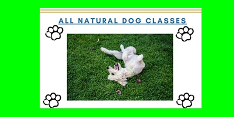 Bar K All-Natural Dog Classes tickets