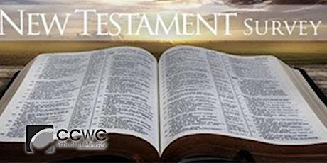 New Testament Survey tickets