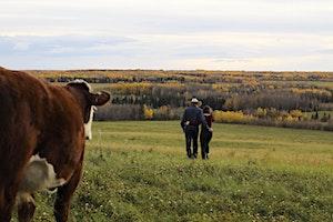 2020 BC Cattlemen's Association AGM & Convention