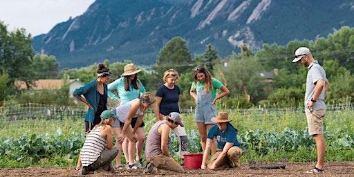 Gardening 101 Class: Starting Your Garden
