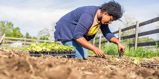 Gardening 201 Class: Garden Management