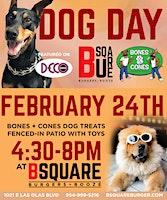 Dog Day at B Square