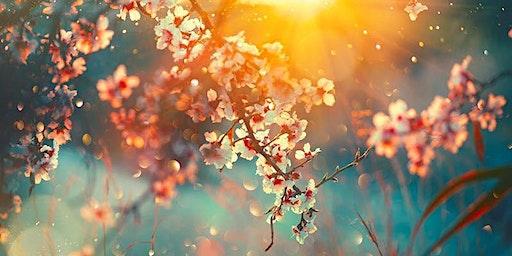 Spring Equinox Ritual & Potluck