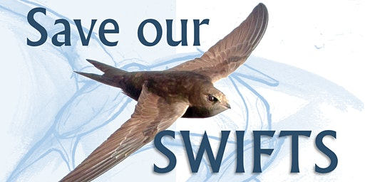Save Our Swifts