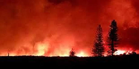 Bush fire round table discussion (includes lunch) tickets