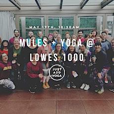 Mule + Yoga at Loews 1000 tickets