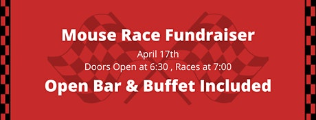 A.R.C. Angels Foundation 2nd Annual Mouse Race Fundraiser tickets