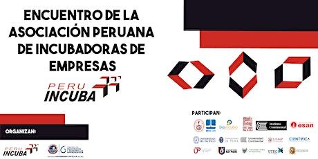Encuentro de la Asociación Peruana de Incubadoras de Empresas (PERUINCUBA) entradas