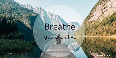 Breathwork Journey ~ An Active Meditation tickets