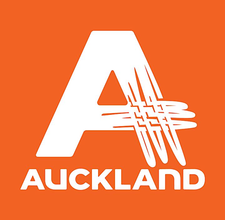 Aotearoa Volleyball Invitational image