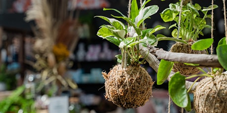 Kokedama Workshop, Carseldine tickets