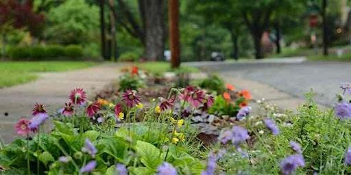 Nature strip gardening