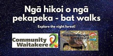 Ngā hikoi o ngā pekapeka - bat walks kei roto i te reo māori tickets