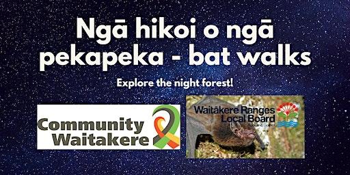Ngā hikoi o ngā pekapeka - bat walks