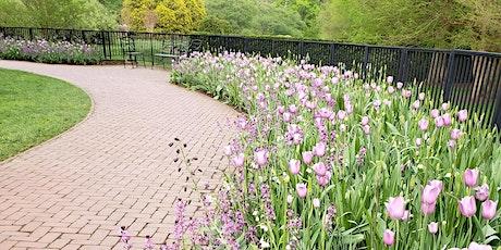 Walk & Reflect at Longwood Gardens tickets