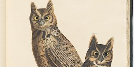 Audubon's big birds tickets