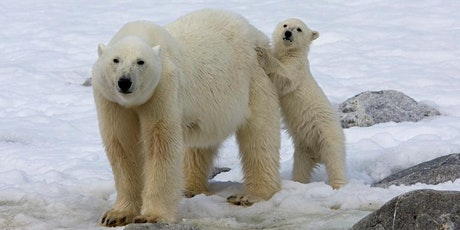 Iceland & the High Arctic (Svalbard, Greenland & Canada) information evening tickets