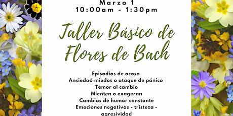Taller Básico de Flores de Bach tickets