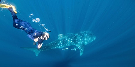 Ningaloo Dreaming  - Whale Sharks and More! tickets