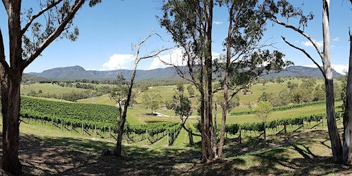 Blue Mountains to Mudgee Region - Wine Tour