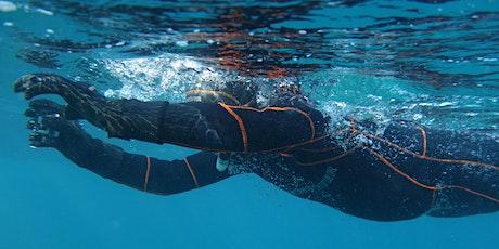 Palmes, kayak et yeux grands ouverts sur la biodiversité marine tickets