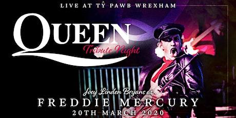 Queen and Freddie Mercury -  tribute night - plus Matt Carrol tickets