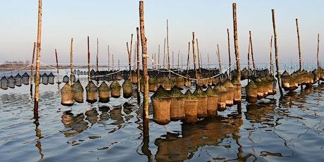 Molluschicoltura, il modello emiliano-romagnolo. Qualità, tracciabilità, certificazione. biglietti