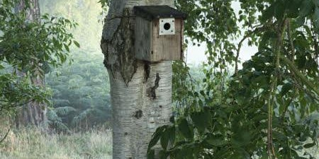 SOLD OUT-National Nestbox Week: Make A Nestbox
