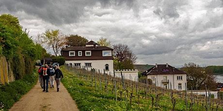 """So,05.04.20 """"Single Wandern zur Weinprobe im Roten Hang für 50+""""  Tickets"""