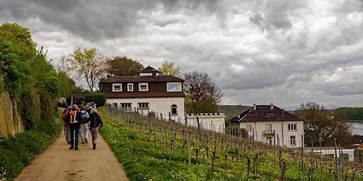 """So,05.04.20 """"Single Wandern zur Weinprobe im Roten Hang für 50+"""""""